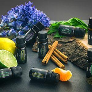 Calily Aromatherapy Essential Oil Set, 6 Bottles/10ml each (Lavender, Tea Tree, Eucalyptus, Lemongrass, Sweet Orange, Peppermint)