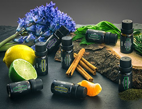 Calily-Aromatherapy-Essential-Oil-Set-6-Bottles10ml-each-Lavender-Tea-Tree-Eucalyptus-Lemongrass-Sweet-Orange-Peppermint-0-1